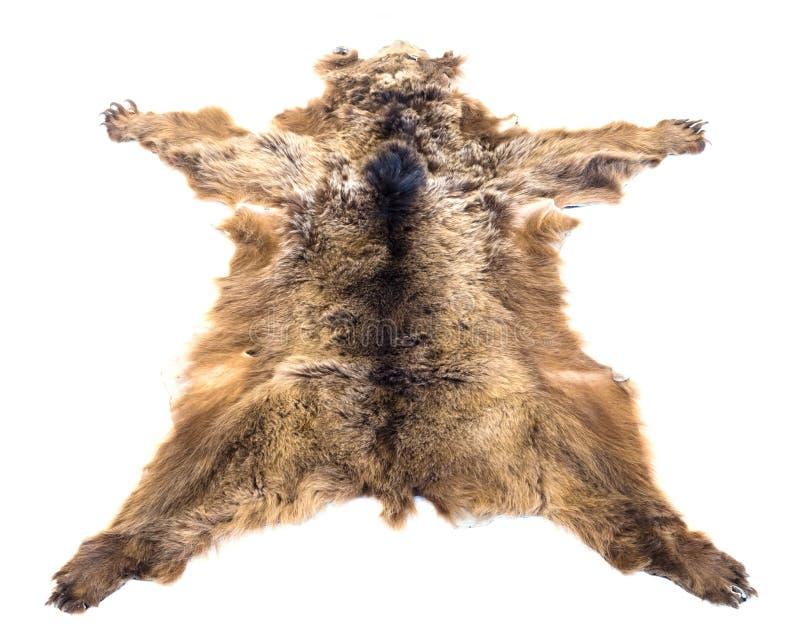Ge?soleerde de huid van de beer royalty-vrije stock foto's