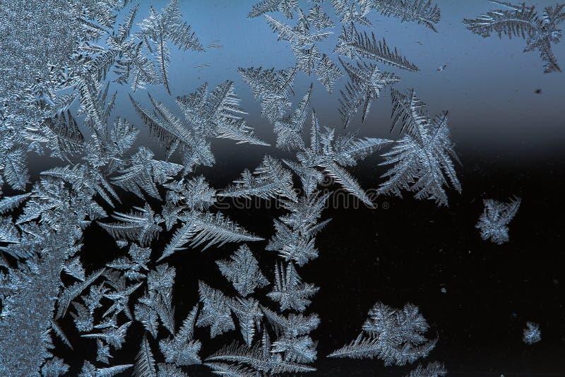 Geada 2018 do gelo do inverno da região de Ucrânia cherkassy da mola imagem de stock royalty free
