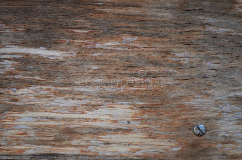 Gealtertes hölzernes Muster als Tapete mit Nagel lizenzfreies stockbild