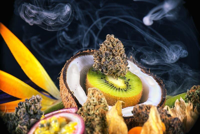 Geassorteerde droge cannabisknoppen met vers tropisch medisch fruit - royalty-vrije stock afbeeldingen
