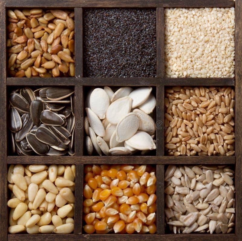 Geassorteerde eetbare zaden die in een doos worden geschikt royalty-vrije stock fotografie