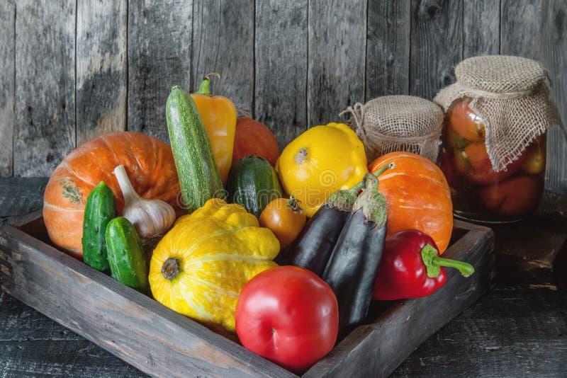 Geassorteerde groenten, pompoen, courgette, aubergine, knoflook, groene uien, en tomaten op een houten achtergrond in rustieke st royalty-vrije stock afbeeldingen