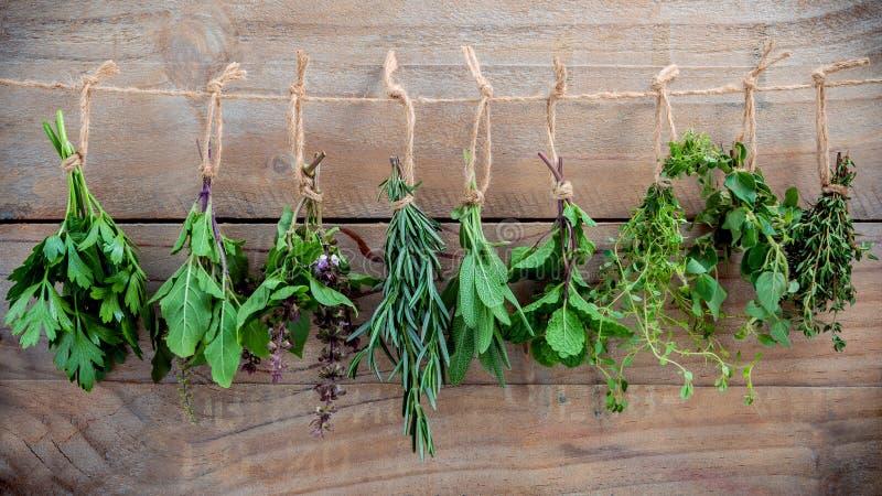 Geassorteerde hangende kruiden, peterselie, orego, munt, salie, rozemarijn, swee stock foto's