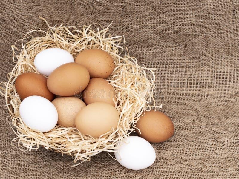 Geassorteerde kip, kippeneieren in mand met stro op jute rustieke achtergrond met exemplaarruimte Verschillende kleuren: bruin royalty-vrije stock foto
