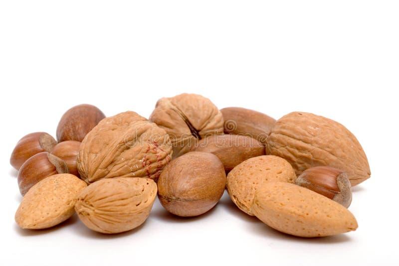 Geassorteerde noten stock foto's