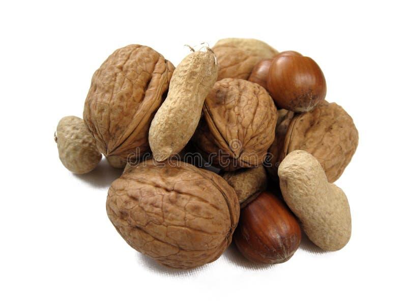 Geassorteerde noten stock afbeeldingen