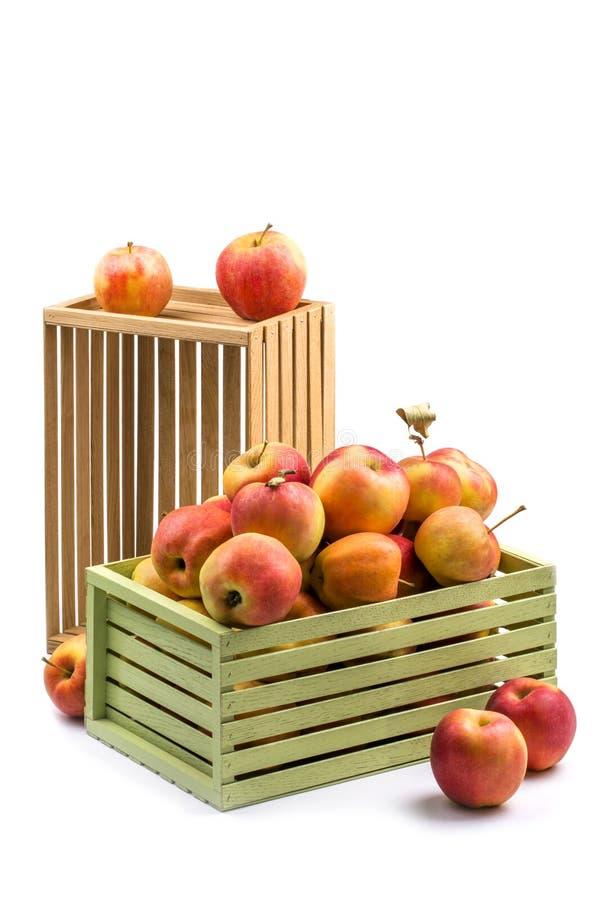 Geassorteerde rijpe appelen in houten dozen royalty-vrije stock foto's