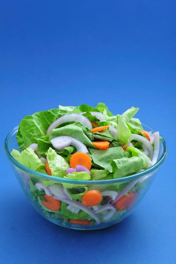 Geassorteerde salade royalty-vrije stock foto's