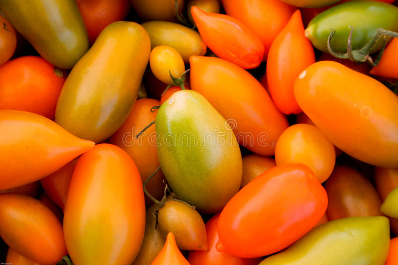 Geassorteerde Tomaten stock foto's