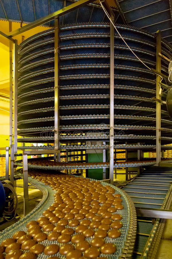 Geautomatiseerd om transportbandmachine in de fabriek, de koekjes en de cakesproductielijn van het bakkerijvoedsel royalty-vrije stock foto's