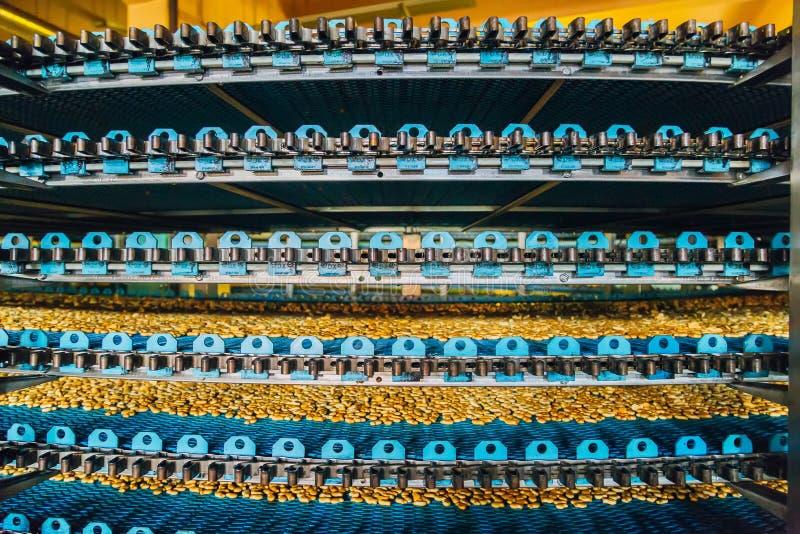Geautomatiseerd om transportbandmachine op verscheidene niveaus in de fabriek van het bakkerijvoedsel royalty-vrije stock foto's