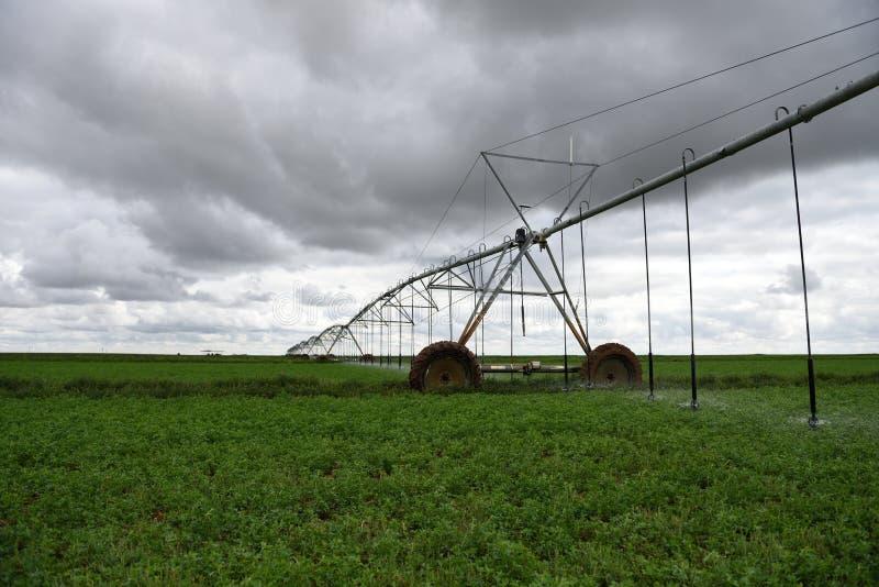 Geautomatiseerde landbouw de irrigatiegebied van de centrumspil het water geven sprenkelinstallatie royalty-vrije stock afbeeldingen