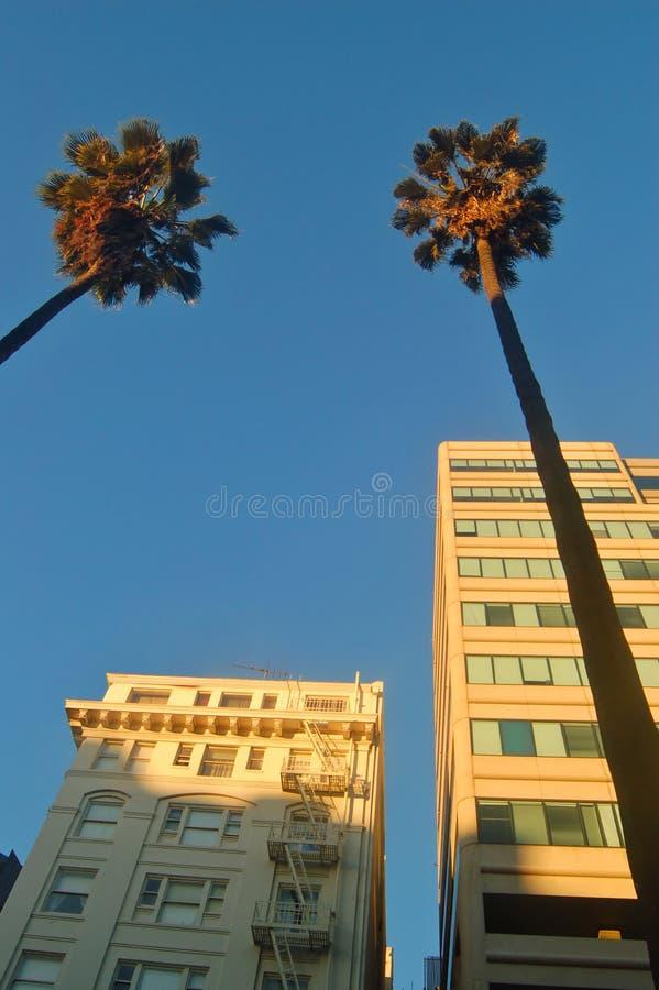 Gebäude beleuchtet durch die Glättung der Leuchte lizenzfreie stockfotos