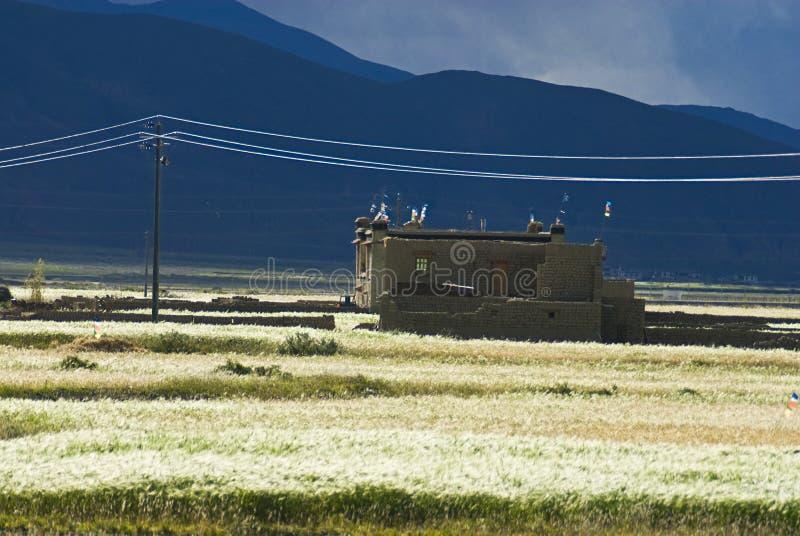 Gebäude in der tibetanischen Landschaft stockfotografie