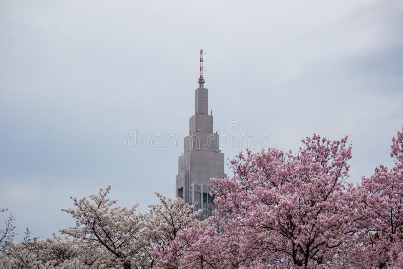 Gebäude NTT Docomo Yoyogi, ein Wolkenkratzer in Shibuya, Tokyo, Japan Mit Kirschbäumen in Shinjuku Gyoen im Vordergrund lizenzfreie stockfotos