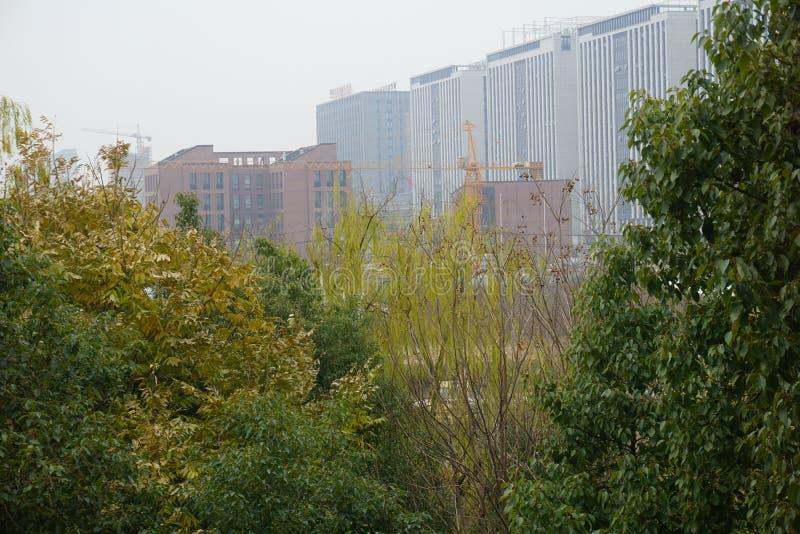 Gebäude unter dem Konstruieren hinter den Bäumen lizenzfreies stockfoto
