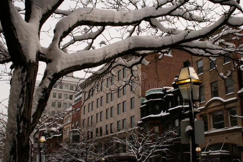 Gebäude von Boston im Schnee stockbild