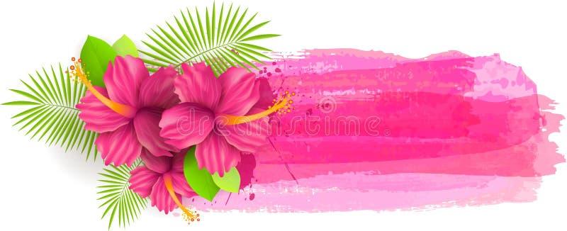 Gebürstete Hintergründe mit Hibiscusblumen stock abbildung