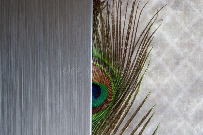 Gebürstete Metallpfau-Federzusammenfassung stockfotos