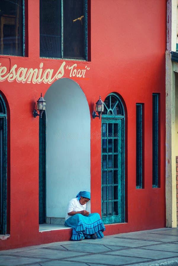 Gebürtige einsame einheimische Dame im traditionellen bunten Kleid mit einem schönen Haus, in Mexiko, Amerika lizenzfreies stockbild