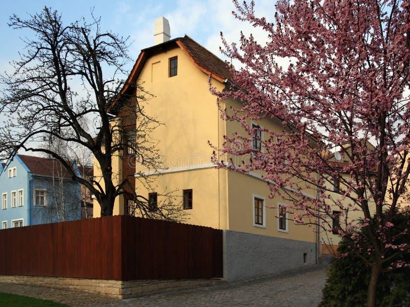 Gebürtiges Haus des Sigmund F lizenzfreies stockbild