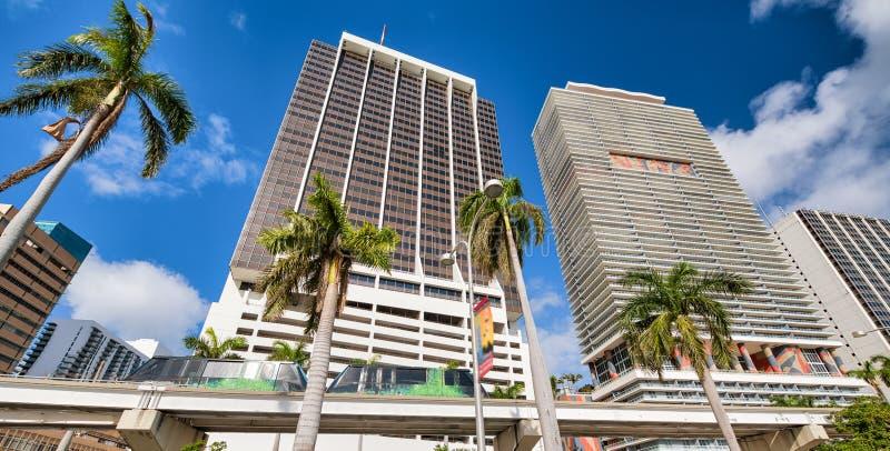Geb?ude und Einschienenbahn von im Stadtzentrum gelegenem Miami mit Palmen an einem sonnigen Tag lizenzfreie stockbilder