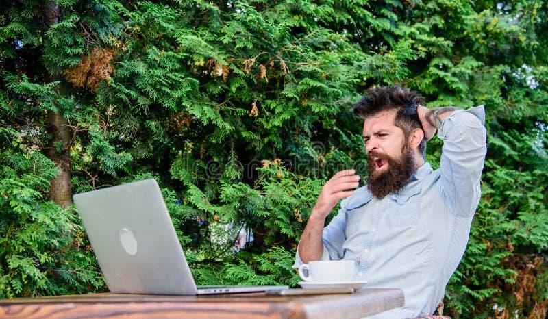Gebaarde hipsterlaptop die Internet surfen Het dagelijkse werk van de verslaggeversjournalist Online het werken Online massamedia stock afbeelding