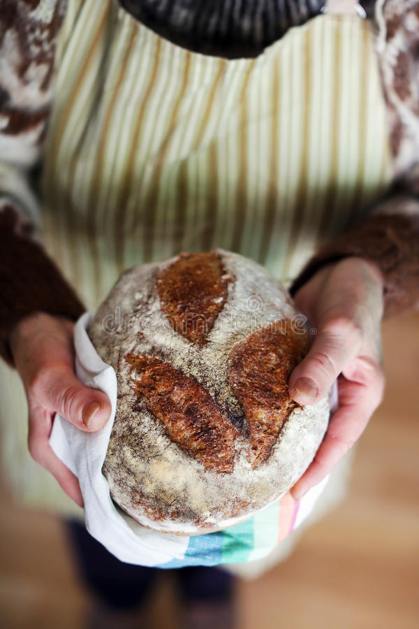 Gebakken brood, whole-grain de holdingshanden van het zuurdesembrood stock foto's