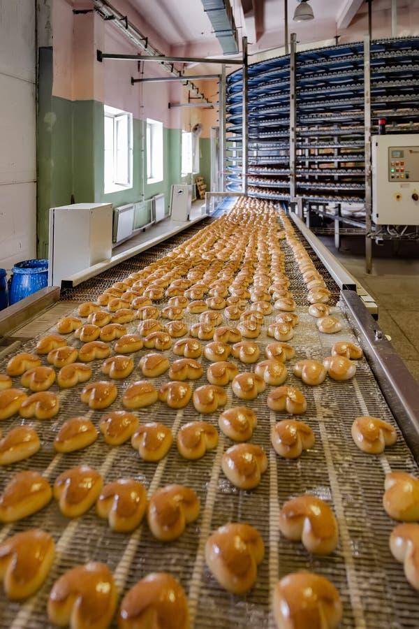 Gebakken koekjes op transportband Geautomatiseerde koekjes en cakesbakkerijproductielijn stock afbeeldingen