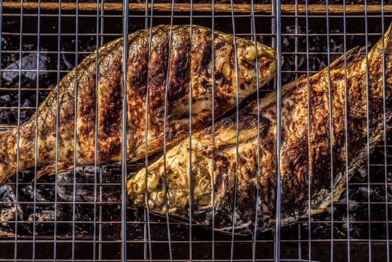 Gebakken op de karpervissen van de houtskoolgrill stock foto's