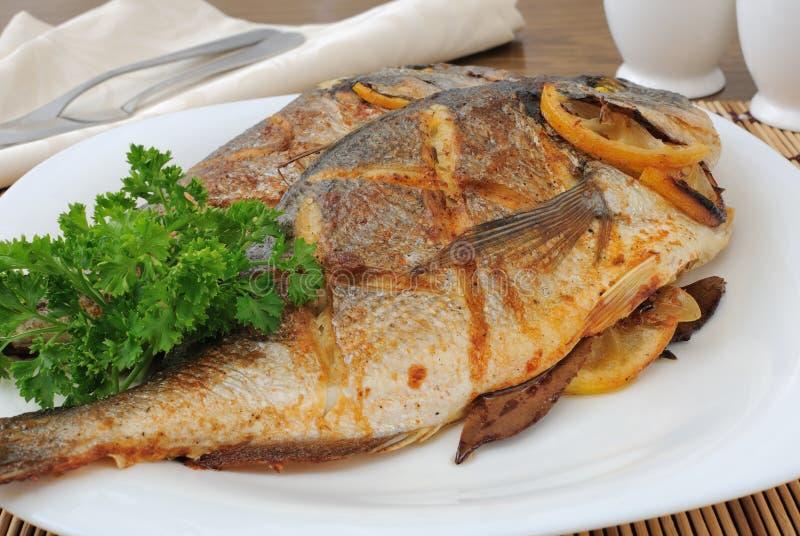 Gebakken vissen met citroen Dorado royalty-vrije stock fotografie