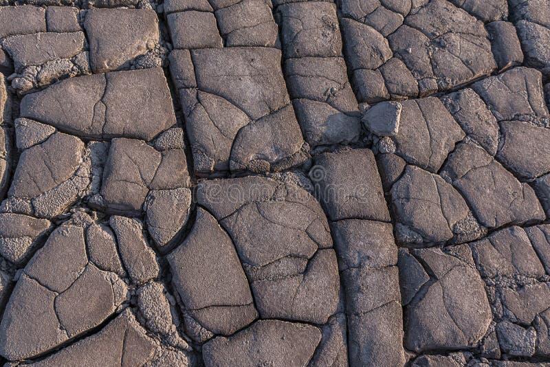 Gebarsten aarde bij de Moddervulkanen - Paclele, Buzau stock fotografie