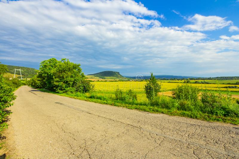 Gebarsten landelijke weg dichtbij gebied met zonnebloem royalty-vrije stock foto