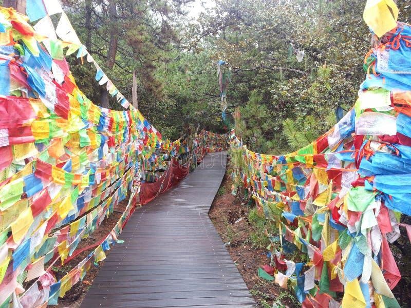Gebed dan dag heilige bergen in Tibet stock foto's