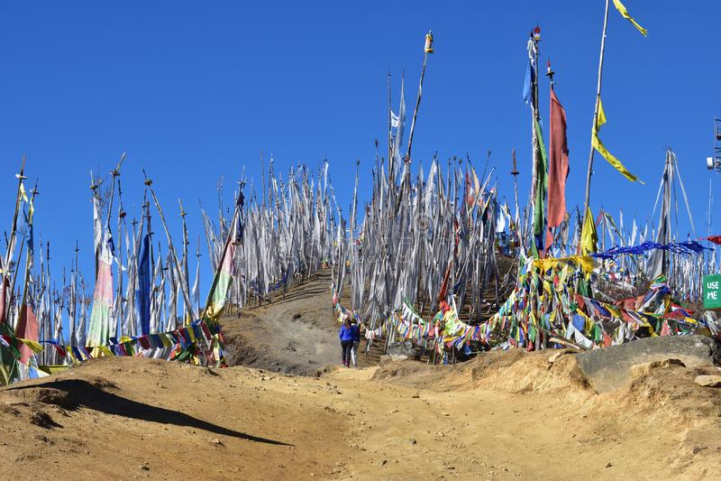 Gebedvlaggen bij Chelela-Pas, Bhutan royalty-vrije stock foto's