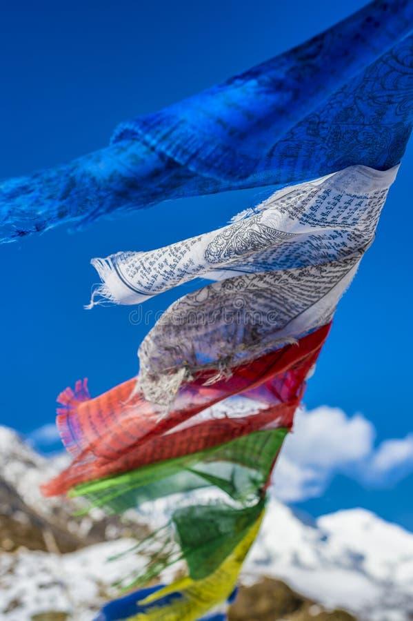 Gebedvlaggen in het Himalayagebergte met Ama Dablam-piek in backgr stock fotografie