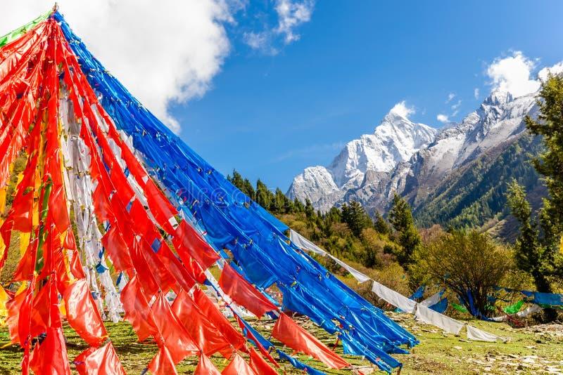 Gebedvlaggen vóór Siguniang-berg in de Provincie van Sichuan royalty-vrije stock afbeelding