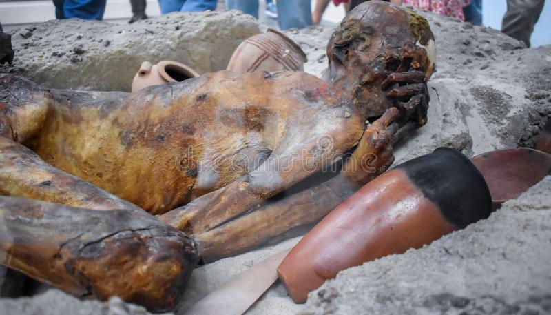 Gebelein man mummy in British Museum. This man died 5500 years ago in Egypt, his body was naturally mummified in the hot desert stock images