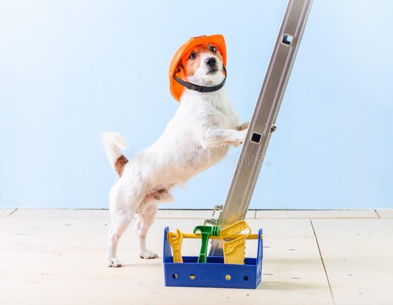 Geben Sie Arbeitskraft mit dem Kasten nach, der von den Werkzeugen voll ist, die auf Leiter stehen stockfotos