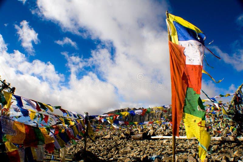 Gebets-Flagge, die im blauen Himmel, Ladakh, Indien flattert lizenzfreie stockbilder