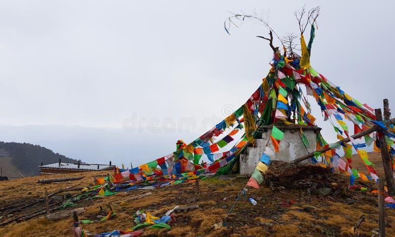 Gebetsflaggen in der Yak-Wiese im Yulong-Schnee-Berg, Yunnan, China stockbilder