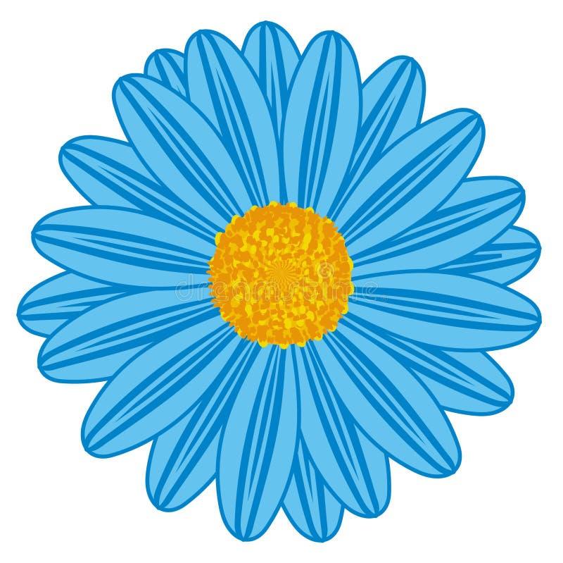 Gebied Daisy Blue royalty-vrije stock fotografie