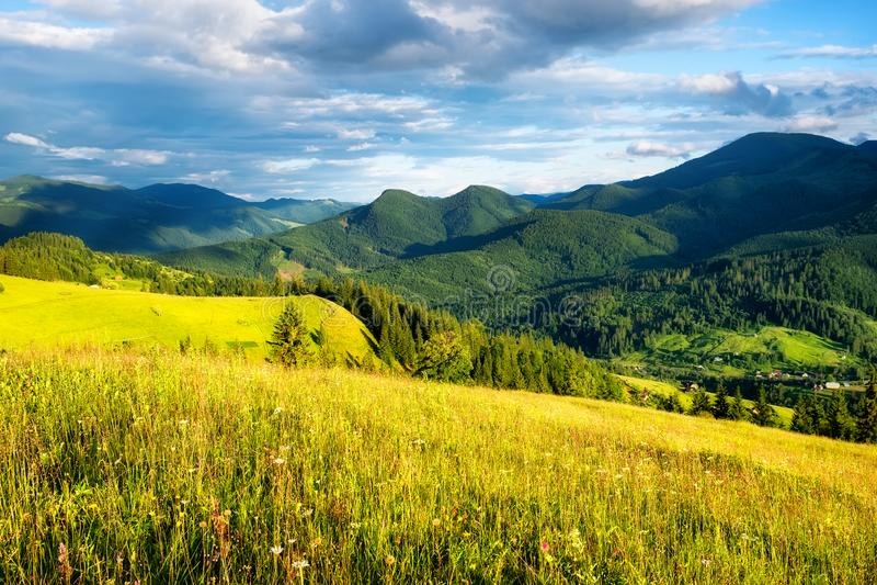Gebied in de bergen De zomerbos in bergen Natuurlijk de zomerlandschap Weide met bloemen in bergen Landelijk landschap royalty-vrije stock afbeeldingen