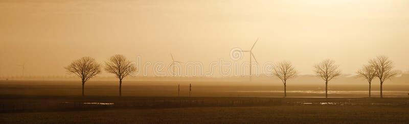 Gebied met bomen en windmolens op de horizon in de ochtend Typisch Nederlands landschap Noord-Holland, Hollands Kroon, Nederland royalty-vrije stock foto's