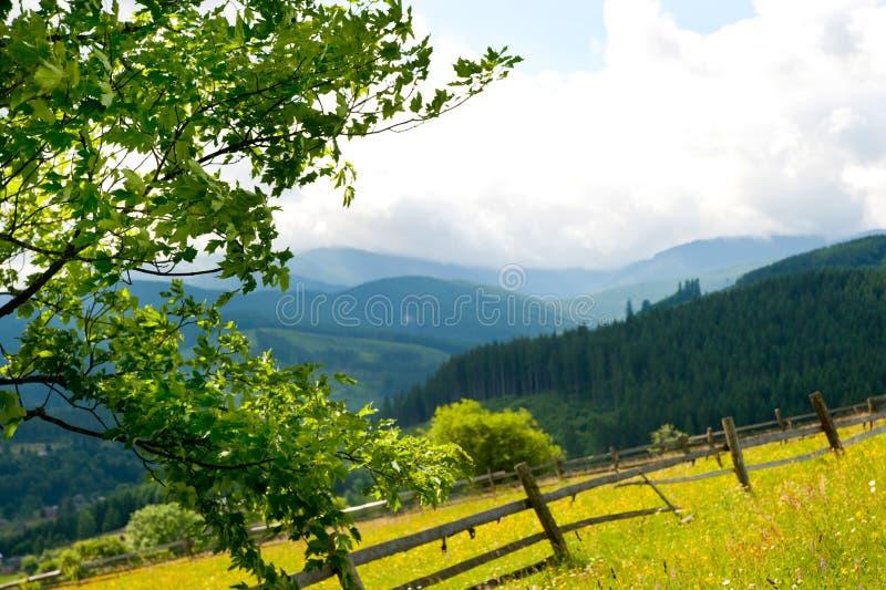 Gebied met hooiberg op bergen stock afbeeldingen