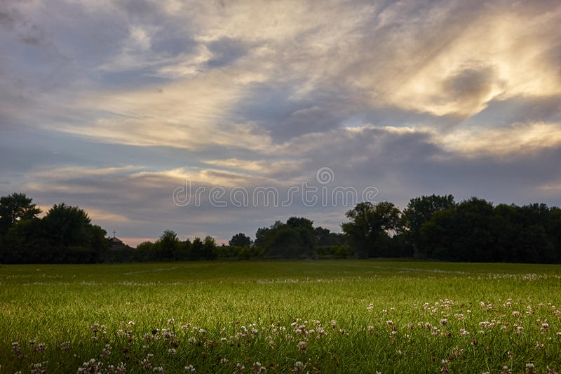 Gebied met zonsondergang stock foto's