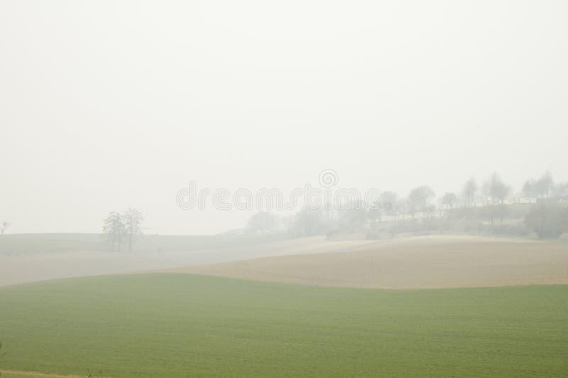 Gebied in mist royalty-vrije stock fotografie