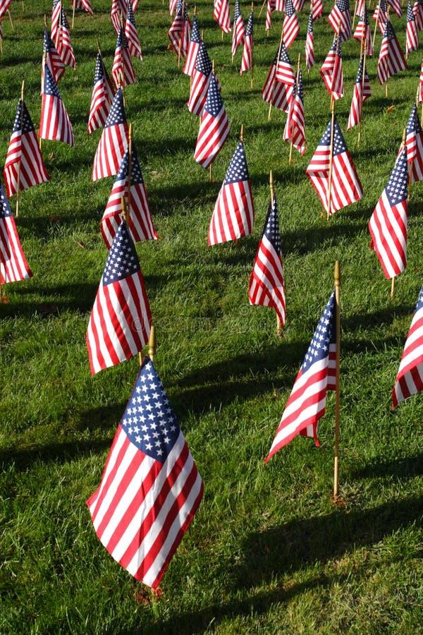 Gebied van Amerikaanse Vlaggen tijdens de Onafhankelijkheidsdag van de V.S. royalty-vrije stock foto's