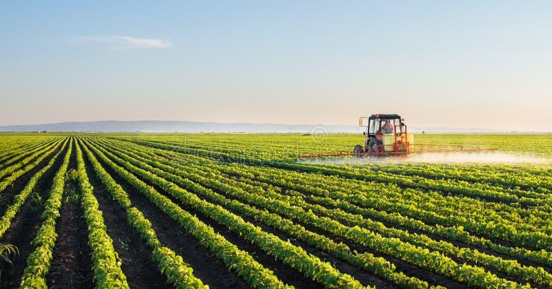 Gebied van de tractor het bespuitende sojaboon royalty-vrije stock foto's