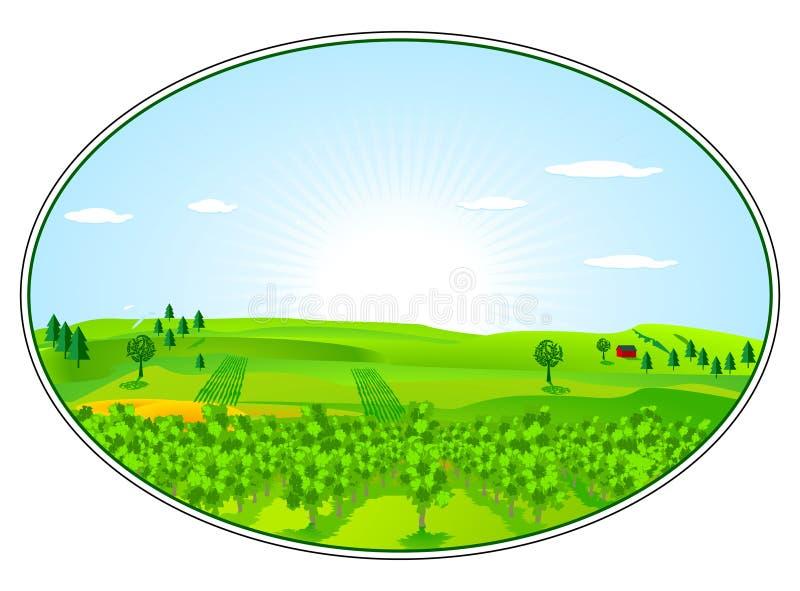 Gebied voor landbouw royalty-vrije illustratie